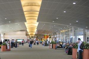 Budget Car Rentals At Tampa Airport