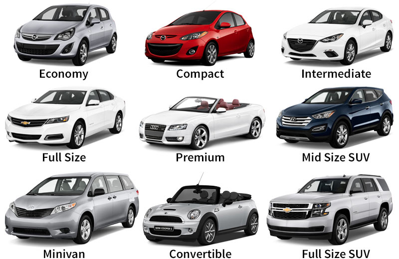 Rental car examples in Florida